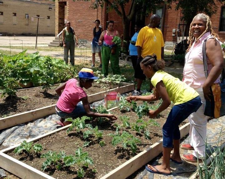 black_farmers_and_urban_gardeners_bugs_2013_2