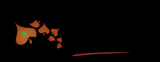 pvge-logo