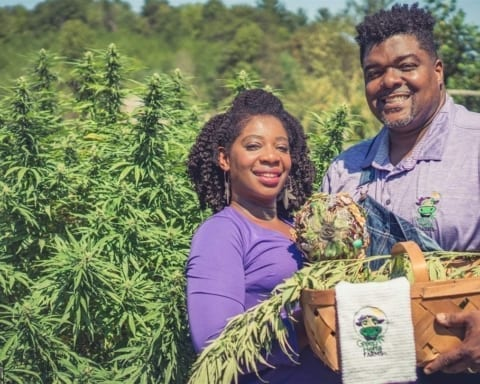 Black hemp farmers